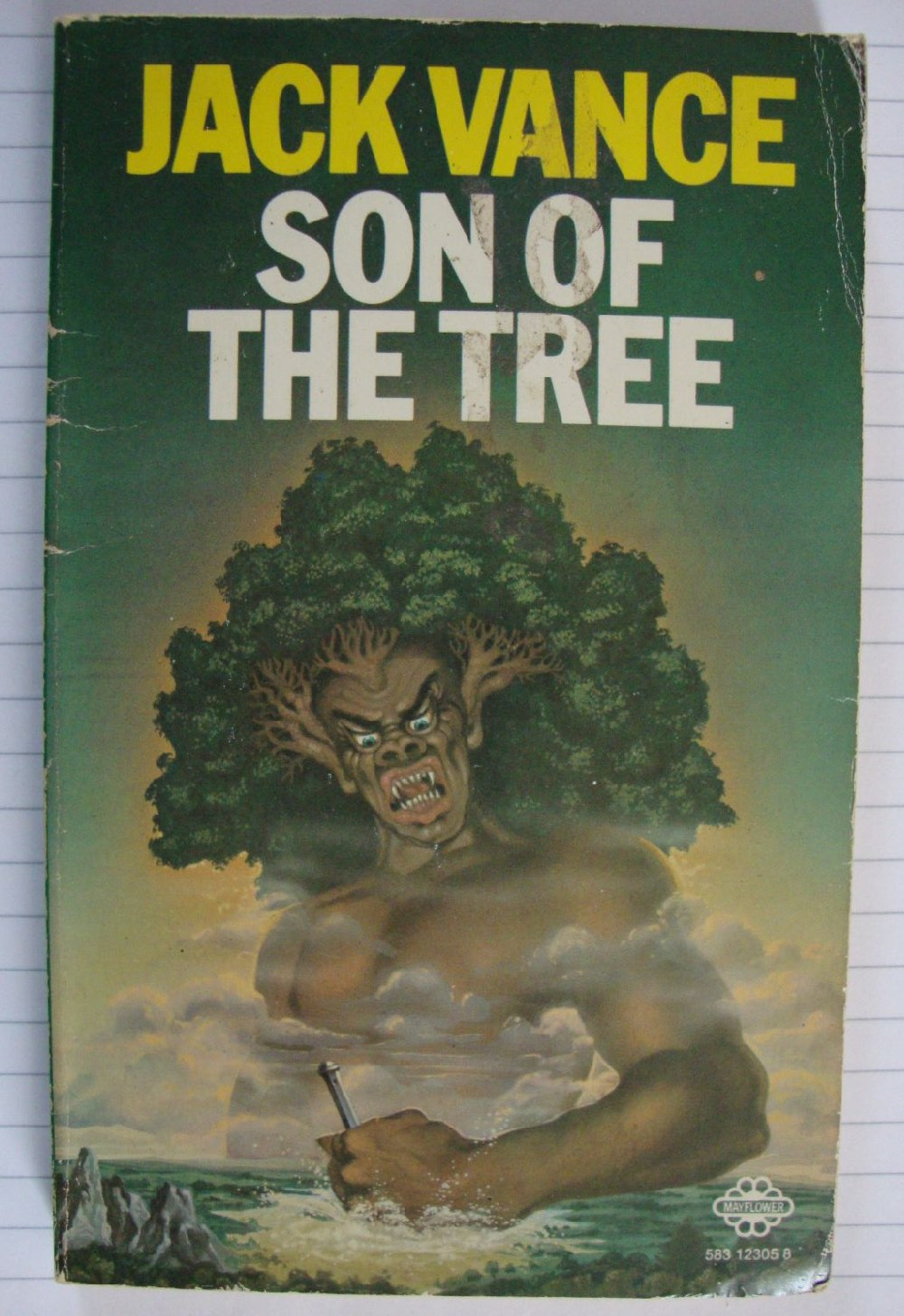 Son-of-a-birch